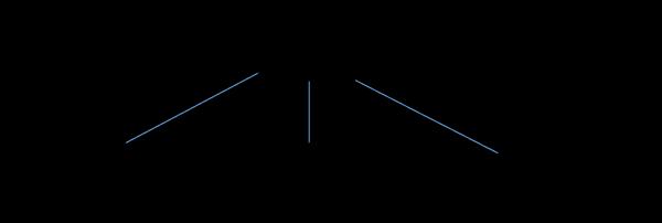strutturasocietaria